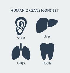 Human organs icons set vector