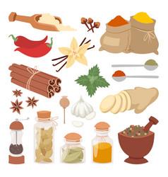 Seasoning food herbs natural ingredient vector