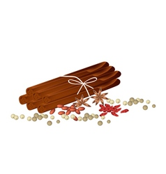 Star anise with cinnamon sticks and peppercorn vector