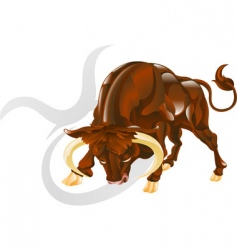 Taurus the bull star sign vector image