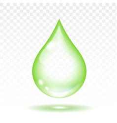 Realistic green transparent drop vector