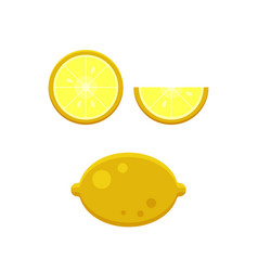 collection of lemons slice isolated on white vector image vector image