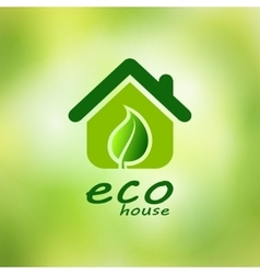 Eco house on a green background vector image