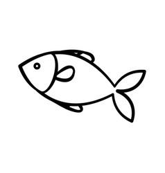 Fish animal icon vector