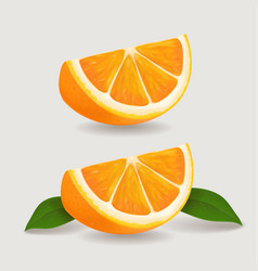 Fresh orange fruit slice with green leaves vector