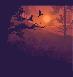 sunrise forest landscape background vector image