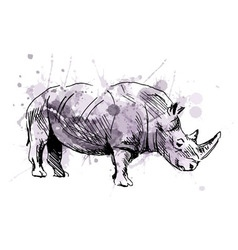 Colored hand sketch rhino vector