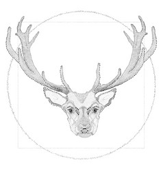 dotwork of deer vector image vector image