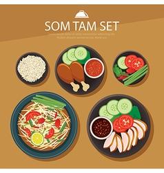 papaya salad som tam thai food flat design vector image vector image