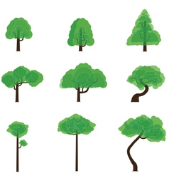Tree collection 5 vector