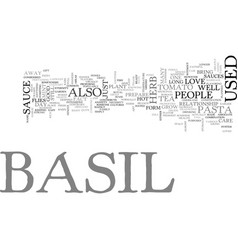 basil text word cloud concept vector image vector image