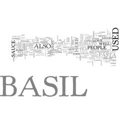 Basil text word cloud concept vector