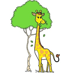 Cute giraffe eating leaves vector