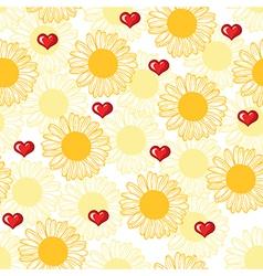chamomile pattern vector image