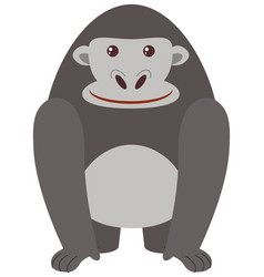 Gray gorilla on white background vector