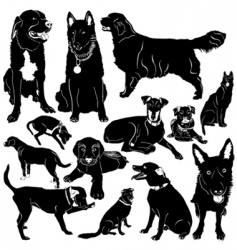 Dog with details vector