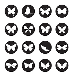group of butterflies in the circle vector image vector image