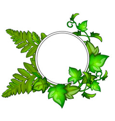 Wreath of green leaves with frame for text vector