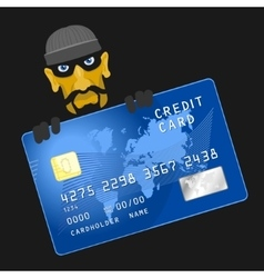 Criminals hacked credit card vector image vector image