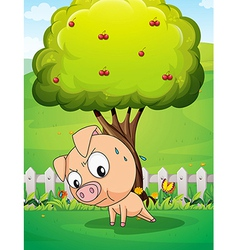 A pig exercising below the cherry tree vector