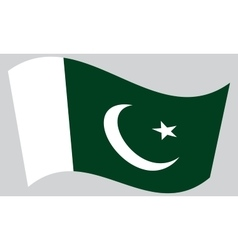 Flag of pakistan waving on gray background vector