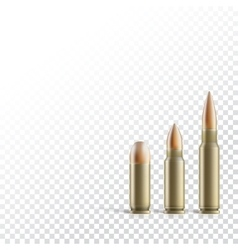 Rifle and pistol bullets vector