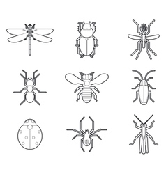 Insects mono line icons set vector