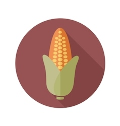 Corn flat icon with long shadow vector