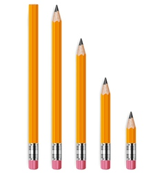 pencils different lengths v vector image
