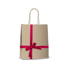 Empty shopping brown bag vector