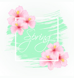Gibiscus flowers with spring lettering vector