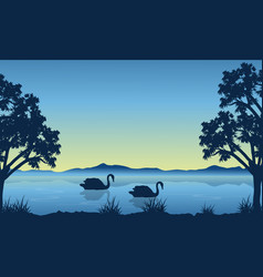Landscape of swan on lake silhouettes vector