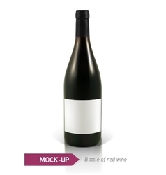 Bottles of red wine vector