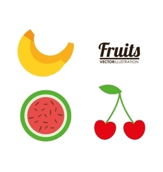 fruit healthy organic food design vector image vector image