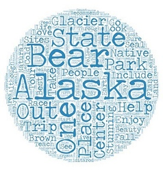 The best sites in alaska text background wordcloud vector