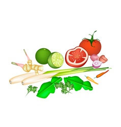 Tom yum soup ingredient on white background vector