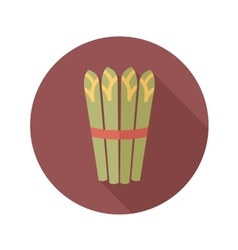 Asparagus flat icon with long shadow vector image