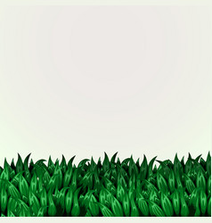 fresh grass banner eco concept vector image