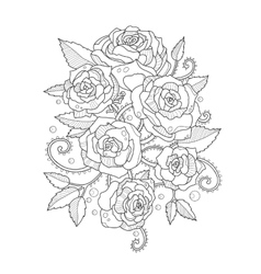 Roses coloring book for adults vector