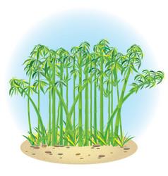 Bamboo 1 vector