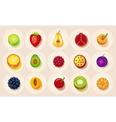 Icons of fruit in a circle vector