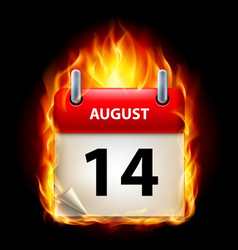 fourteenth august in calendar burning icon on vector image vector image