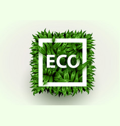 realistic grass frame eco concept fresh grass in vector image