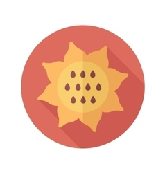 Sunflower flat icon with long shadow vector