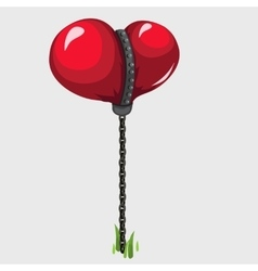 Balloon in the shape of red heart held on chain vector image