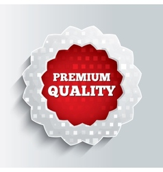 Premium quality glass star button vector image