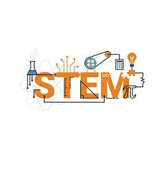 Stem word typography design vector