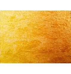 Texture of golden surface vector