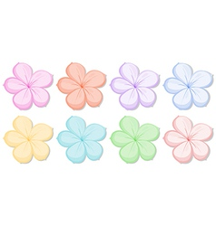 Eight five-petal flowers in different colors vector