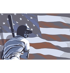 Baseball flag usa color vector